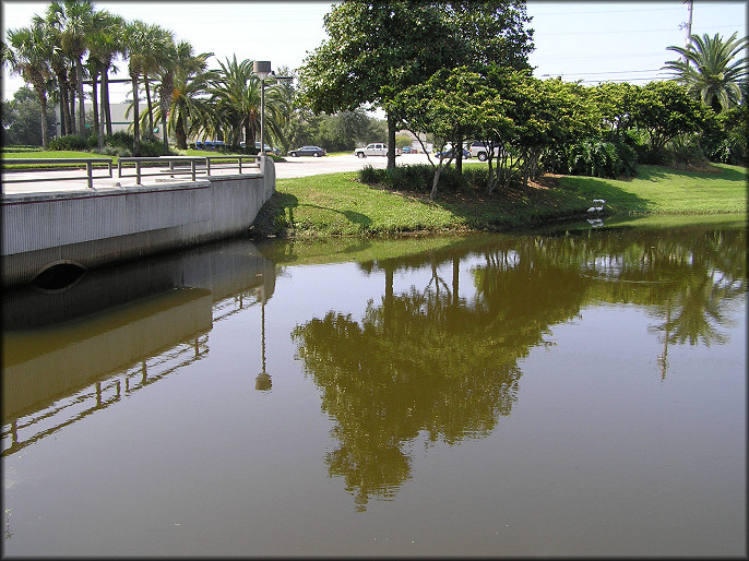 Lake At Cypress Plaza - Looking Towards Philips Highway