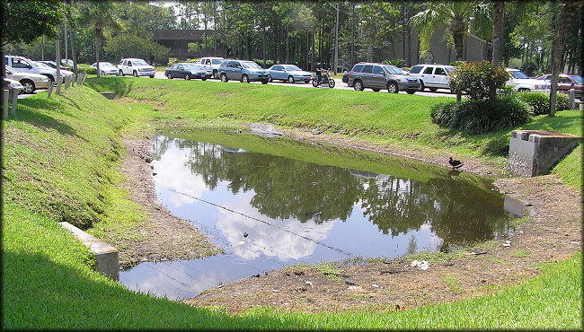Roadside Retention Pond On Baymeadows Road