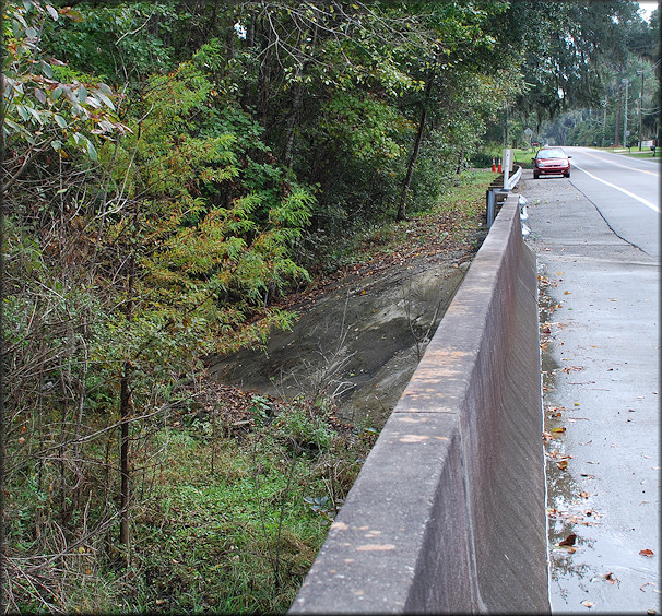 Looking south to the Daedalochila habitat on the southeast end of the SR-13 bridge over Kentucky Branch (11/9/2009)