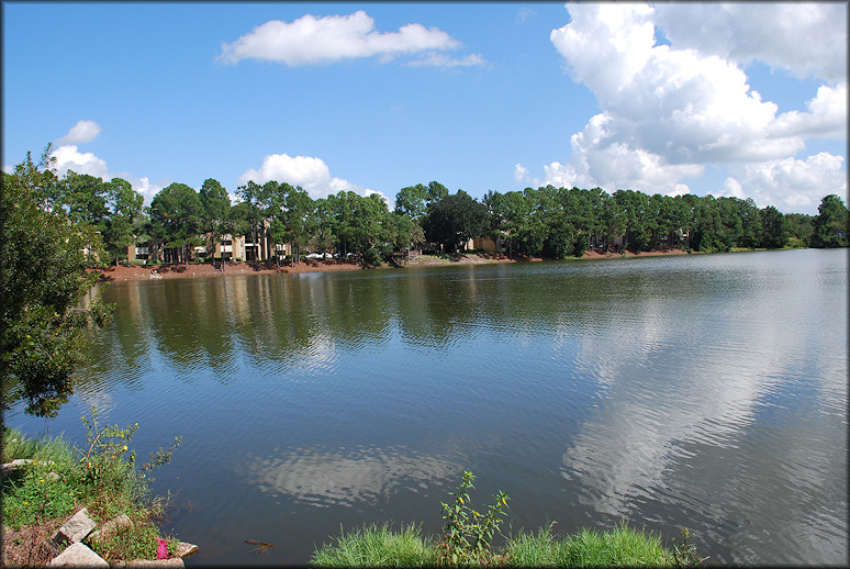 Looking northeast across the lake from St. Augustine at the Lake Apartment Homes