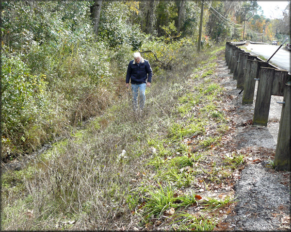 Harry Lee peruses the northeastern bridge approach. The view is looking south in the direction of Paines Branch.