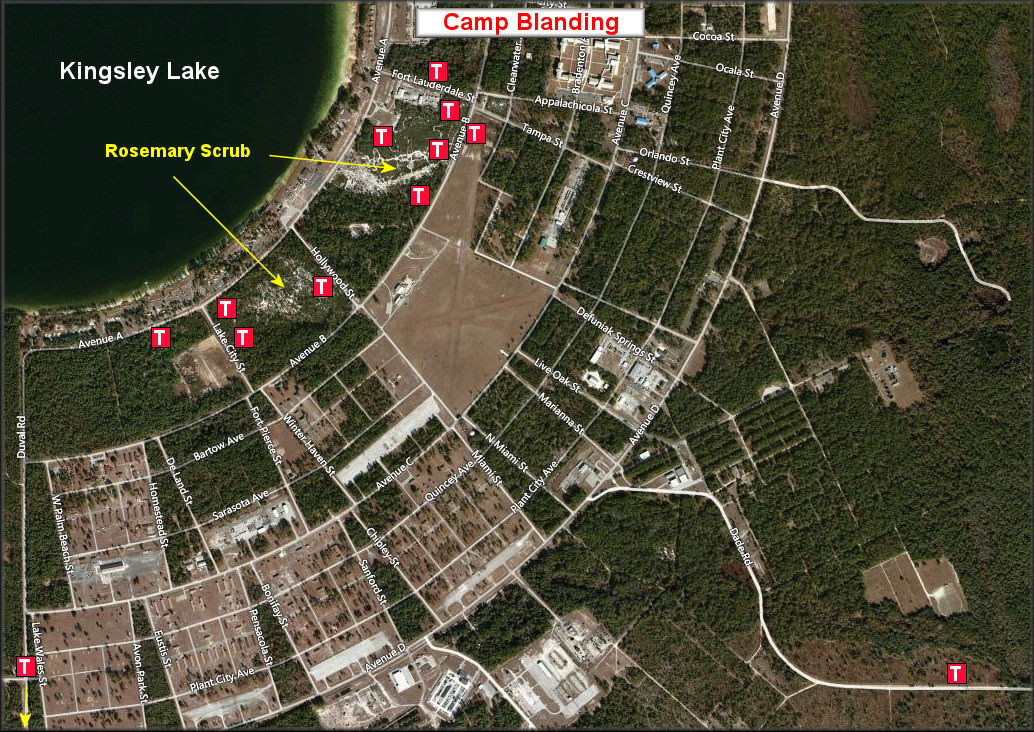 Camp Blanding Florida Map.Triodopsis Species Florida Scrub Threetooth In Northern Camp