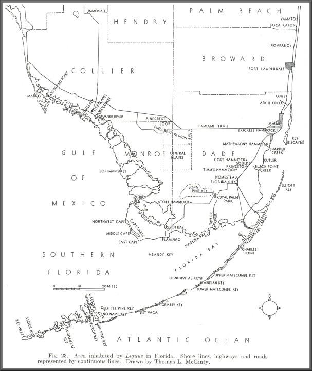 South Florida Liguus Habitat Map